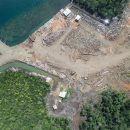 Solomon Islands' forests felled fast to feed China demand — Global Witness